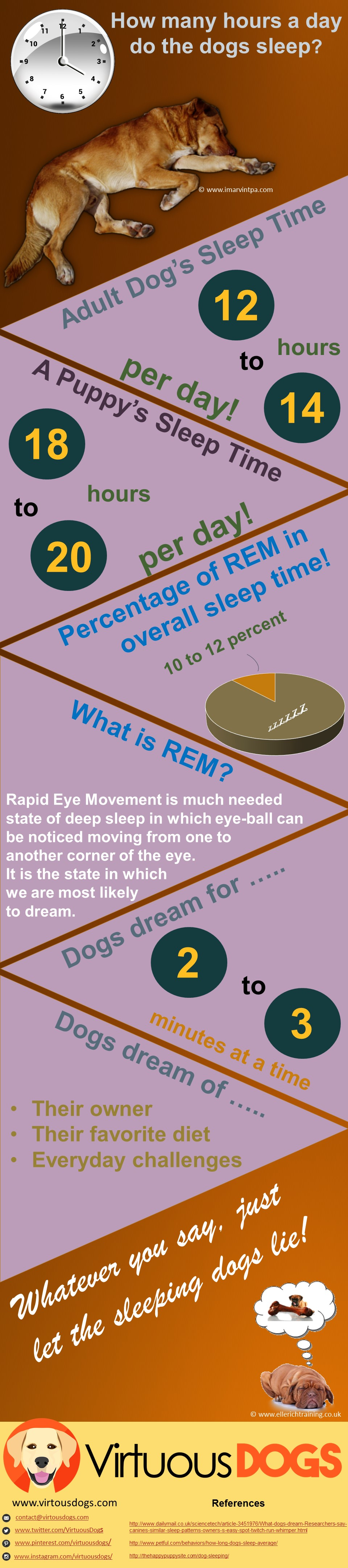 How many hours a day do dogs sleep Infographics