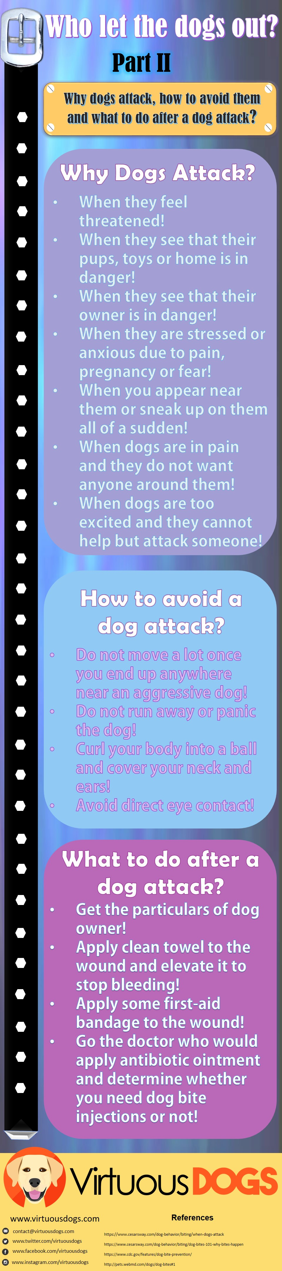 Dog Attack Infographics