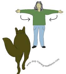 Train your dog with hand Signals